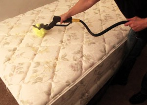 MC Cleaners Springfield QLD Brisbane Australia - Residential Cleaning, Office Cleaning, Commercial Cleaning, Mattress Cleaning
